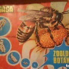 Coleccionismo Álbum: ZOOLOGIA Y BOTANICA. Lote 138774798