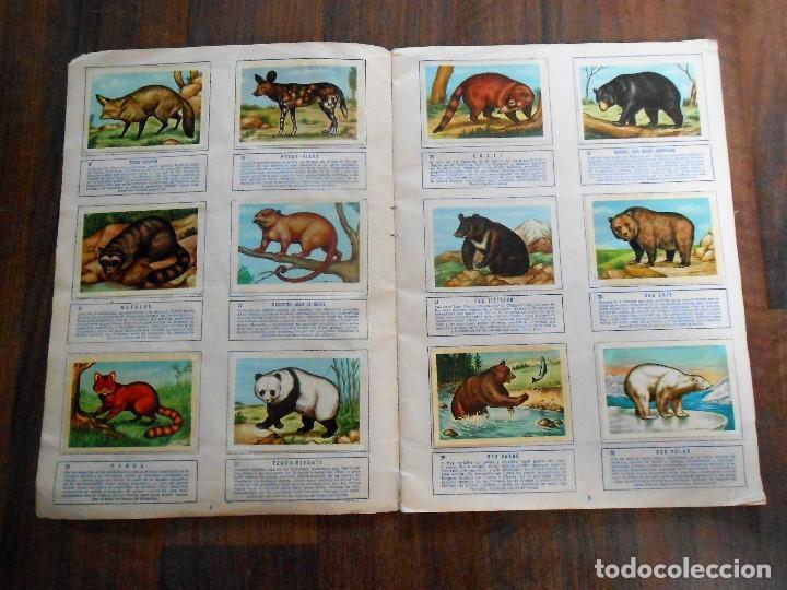 Coleccionismo Álbum: ALBUM DE CROMOS ZOOLOGIA COMPLETO FERCA 1961 ALBUN alfreedom ANIMALES ESTAMPAS CARDS CROMO - Foto 4 - 142054698