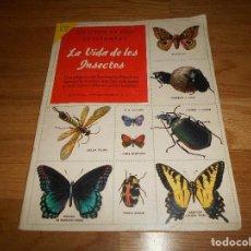 Coleccionismo Álbum: ÁLBUM DE CROMOS COMPLETO / NUEVO - VIDA DE LOS INSECTOS - UN LIBRO DE ORO ESTAMPAS - Nº 10 - NOVARO. Lote 142856798