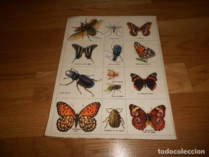 Coleccionismo Álbum: Álbum de Cromos Completo / Nuevo - Vida de los Insectos - Un Libro de Oro Estampas - Nº 10 - Novaro - Foto 6 - 142856798