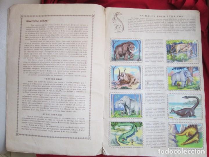Coleccionismo Álbum: ALBUM SEMI COMPLETO ANIMALES DE TODO EL MUNDO. EDITORIAL FHER. AÑOS 50. FALTAN 17 CROMOS (DE 300) - Foto 3 - 146656606