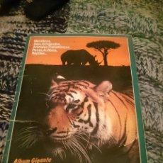 Coleccionismo Álbum: COMPLETO ALBUM GIGANTE DE LOS ZOOCROMOS. Lote 146812486