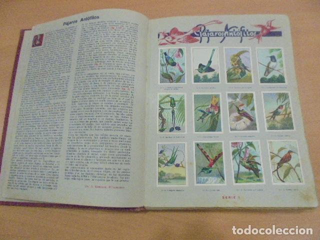 Coleccionismo Álbum: LAS MARAVILLAS DEL MUNDO - COMPLETO - NESTLE - Foto 4 - 147059510