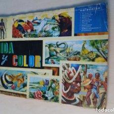 Coleccionismo Álbum: ALBUM VIDA Y COLOR - COMPLETO 380 CROMOS AÑO 1965 -. Lote 183262832