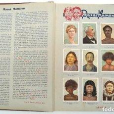 Coleccionismo Álbum: ALBUM 1932 NESTLE LAS MARAVILLAS DEL MUNDO. COMPLETO 480 CROMOS. ANIMALES, PLANTAS, RAZAS. Lote 147945510