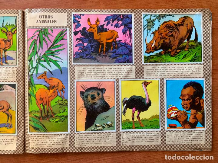 Coleccionismo Álbum: ALBUM MAGA. AFRICA Y SUS HABITANTES. COMPLETO. - Foto 2 - 155490530