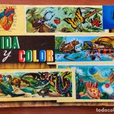 Coleccionismo Álbum: ALBUM VIDA Y COLOR. EDITADO POR ALBUMES ESPAÑOLES S.A. AÑO 1965. COMPLETO.. Lote 155493286