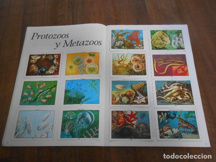 Coleccionismo Álbum: ALBUM DE CROMOS COMPLETO CIENCIAS NATURALES 1 EASO CON 253 CROMO ALBUN alfreedom - Foto 4 - 163782661