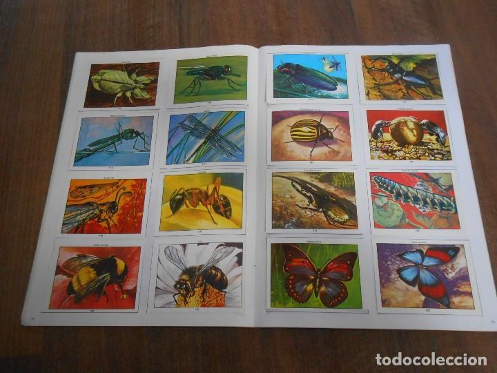 Coleccionismo Álbum: ALBUM DE CROMOS COMPLETO CIENCIAS NATURALES 1 EASO CON 253 CROMO ALBUN alfreedom - Foto 5 - 163782661
