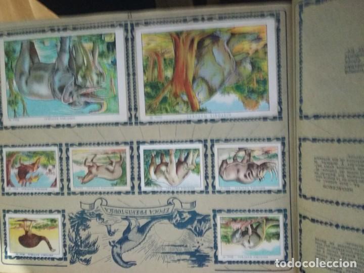 Coleccionismo Álbum: HISTORIA NATURAL CHOCOLATES JUNCOSA. COMPLETO - Foto 4 - 163060718