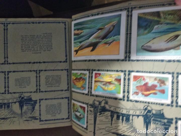 Coleccionismo Álbum: HISTORIA NATURAL CHOCOLATES JUNCOSA. COMPLETO - Foto 6 - 163060718