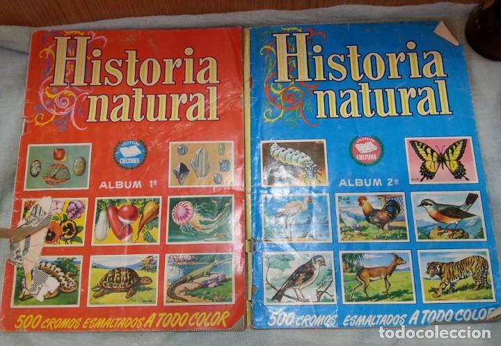 ALBUM DE CROMOS HISTORIA NATURAL. AÑOS 60- 70. COMPLETO. DOS UNIDADES (Coleccionismo - Cromos y Álbumes - Álbumes Completos)