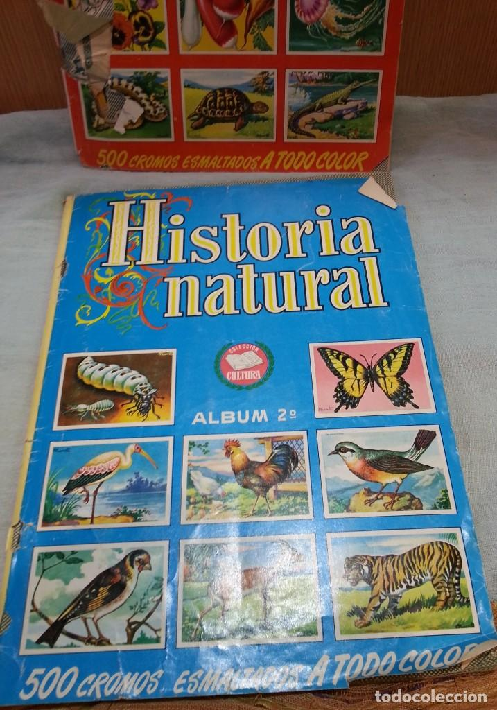 Coleccionismo Álbum: Album de cromos HISTORIA NATURAL. AÑOS 60- 70. COMPLETO. DOS UNIDADES - Foto 2 - 164487950