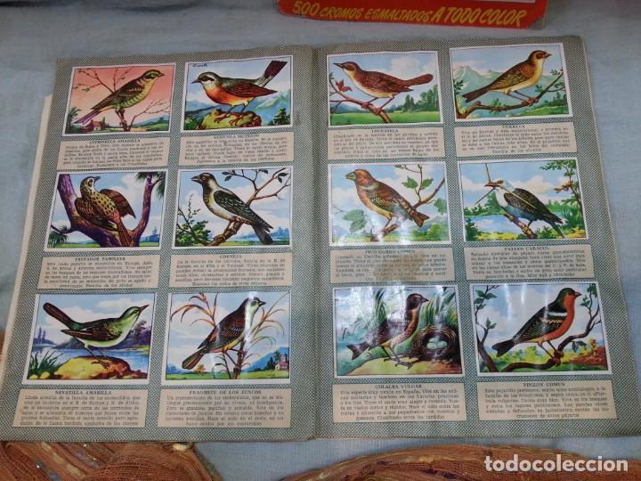 Coleccionismo Álbum: Album de cromos HISTORIA NATURAL. AÑOS 60- 70. COMPLETO. DOS UNIDADES - Foto 7 - 164487950