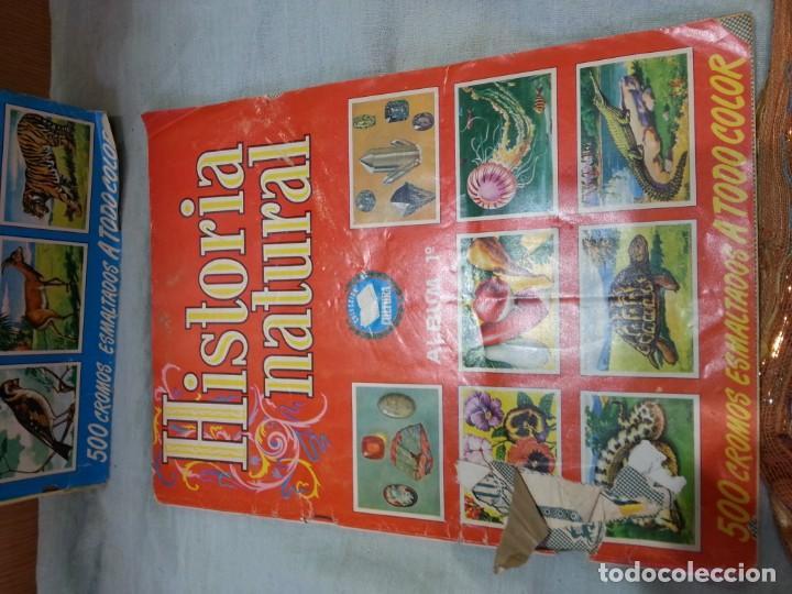 Coleccionismo Álbum: Album de cromos HISTORIA NATURAL. AÑOS 60- 70. COMPLETO. DOS UNIDADES - Foto 10 - 164487950