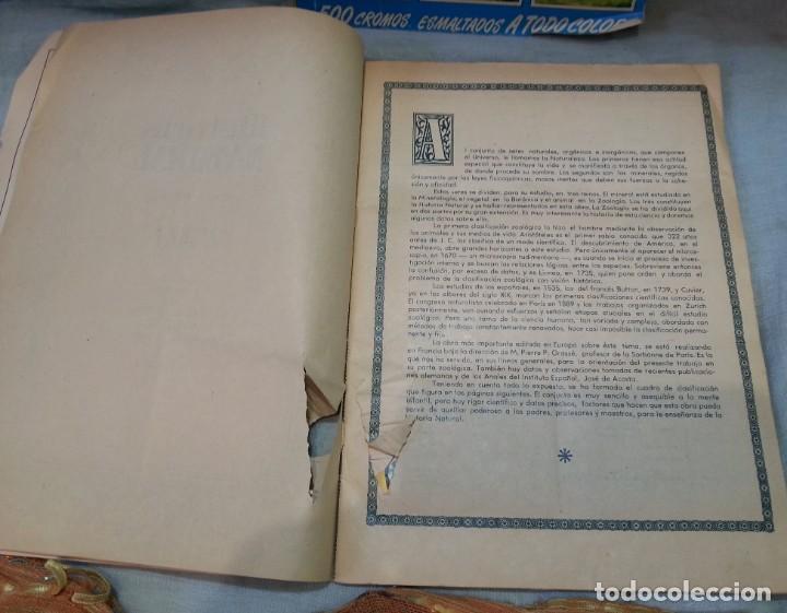 Coleccionismo Álbum: Album de cromos HISTORIA NATURAL. AÑOS 60- 70. COMPLETO. DOS UNIDADES - Foto 12 - 164487950