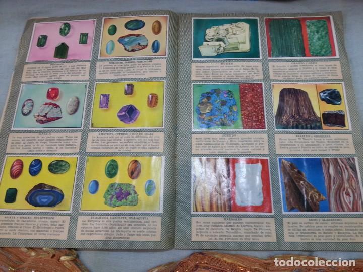 Coleccionismo Álbum: Album de cromos HISTORIA NATURAL. AÑOS 60- 70. COMPLETO. DOS UNIDADES - Foto 14 - 164487950