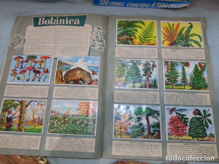 Coleccionismo Álbum: Album de cromos HISTORIA NATURAL. AÑOS 60- 70. COMPLETO. DOS UNIDADES - Foto 15 - 164487950