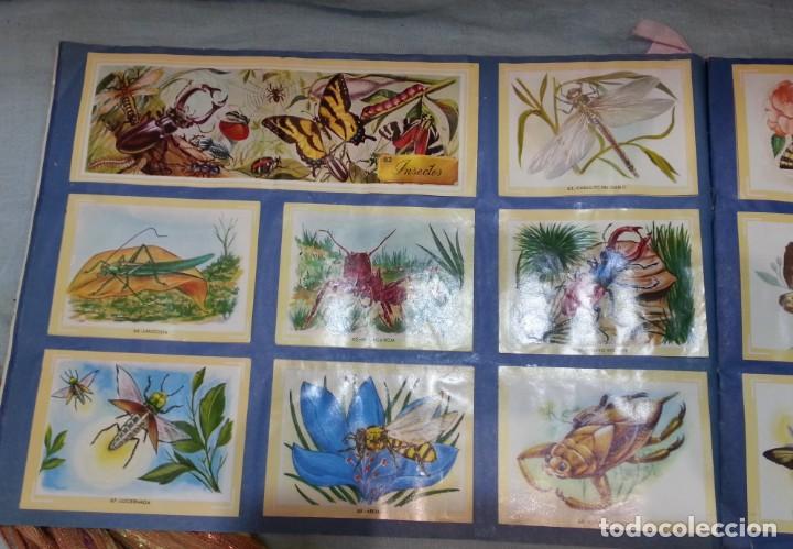 Coleccionismo Álbum: Album de cromos NATURAMA. AÑOS 60- 70. COMPLETO. - Foto 5 - 165057094