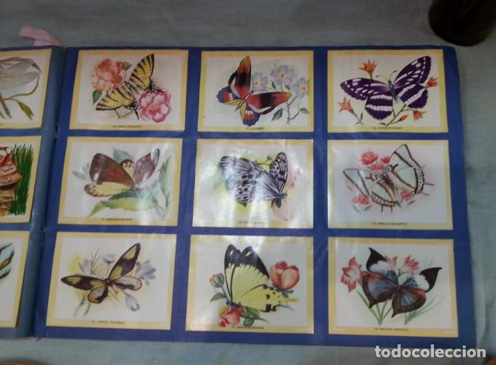Coleccionismo Álbum: Album de cromos NATURAMA. AÑOS 60- 70. COMPLETO. - Foto 6 - 165057094