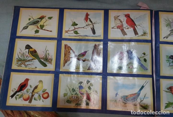 Coleccionismo Álbum: Album de cromos NATURAMA. AÑOS 60- 70. COMPLETO. - Foto 11 - 165057094