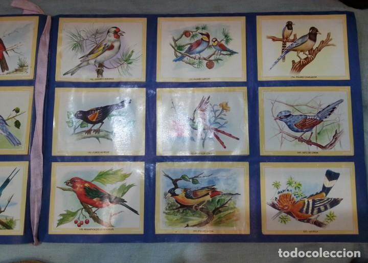 Coleccionismo Álbum: Album de cromos NATURAMA. AÑOS 60- 70. COMPLETO. - Foto 12 - 165057094
