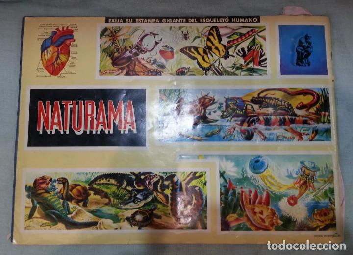 Coleccionismo Álbum: Album de cromos NATURAMA. AÑOS 60- 70. COMPLETO. - Foto 18 - 165057094