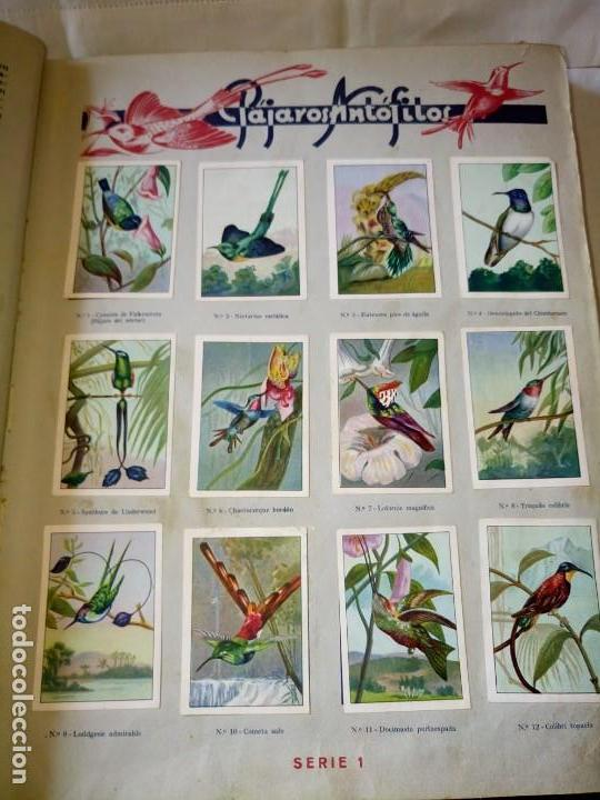 Coleccionismo Álbum: ~~~~ LAS MARAVILLAS DEL MUNDO NESTLÉ, 40 SERIES COMPLETO, BUEN ESTADO .~~~~ - Foto 2 - 171438875