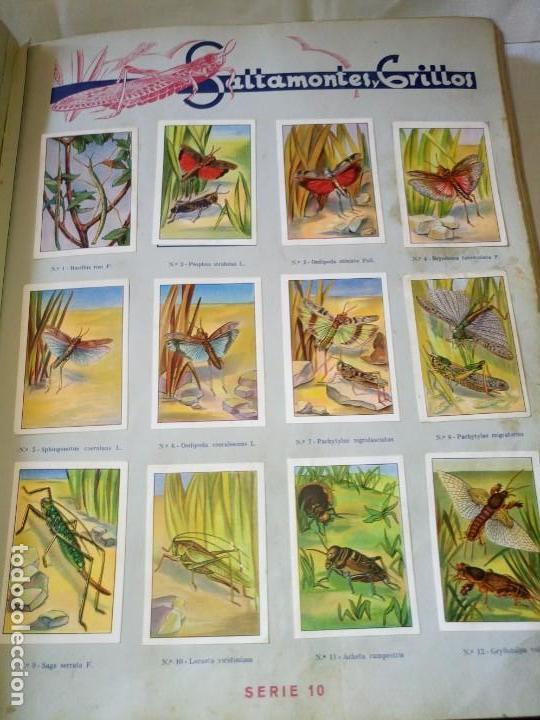 Coleccionismo Álbum: ~~~~ LAS MARAVILLAS DEL MUNDO NESTLÉ, 40 SERIES COMPLETO, BUEN ESTADO .~~~~ - Foto 3 - 171438875