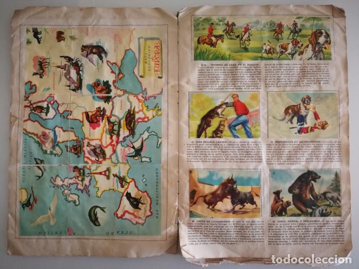 Coleccionismo Álbum: ALBUM SELVA MISTERIOS FHER COMPLETO - Foto 5 - 174387050