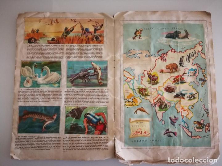 Coleccionismo Álbum: ALBUM SELVA MISTERIOS FHER COMPLETO - Foto 7 - 174387050