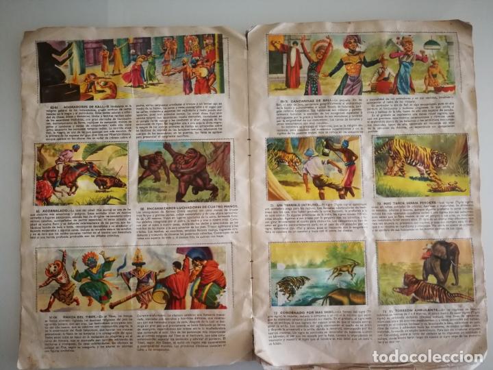 Coleccionismo Álbum: ALBUM SELVA MISTERIOS FHER COMPLETO - Foto 8 - 174387050