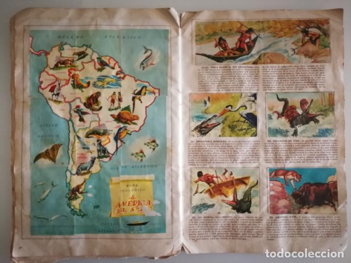 Coleccionismo Álbum: ALBUM SELVA MISTERIOS FHER COMPLETO - Foto 10 - 174387050