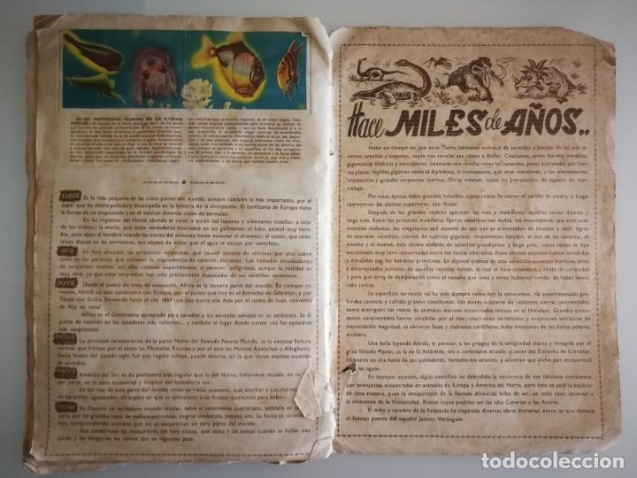 Coleccionismo Álbum: ALBUM SELVA MISTERIOS FHER COMPLETO - Foto 13 - 174387050