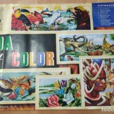 Coleccionismo Álbum: ALBUM DE CROMOS VIDA Y COLOR , COMPLETO Y EN MUY BUEN ESTADO. Lote 178763542