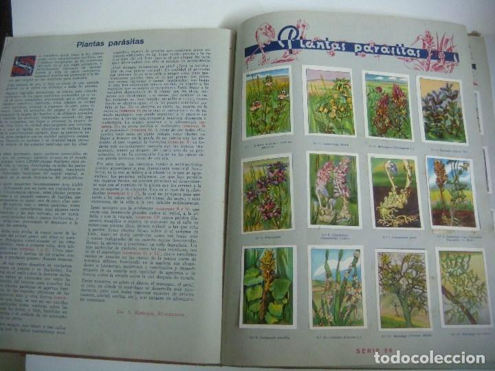 Coleccionismo Álbum: ALBUN DE CROMOS LAAS MARAVILLAS DEL MUNDO EDITADO POR NESTLE COMPLETO - Foto 2 - 182787270