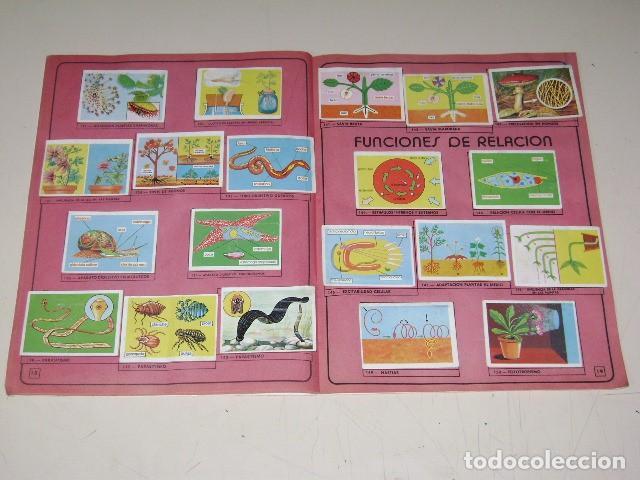 Coleccionismo Álbum: Album Ciencias - Editorial Navarrete 1985 - 100% Completo - Foto 5 - 60626343