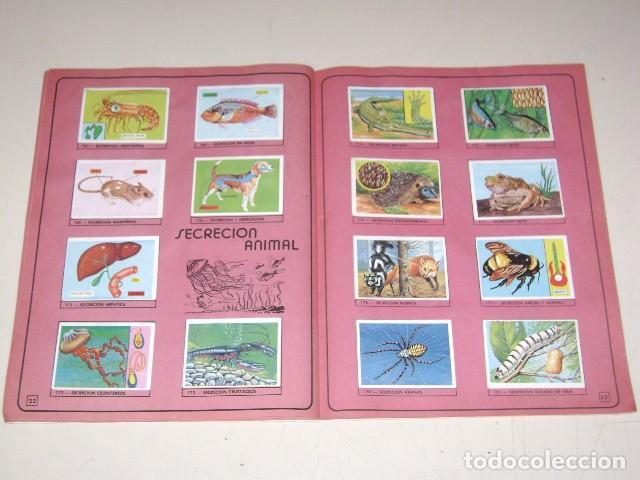 Coleccionismo Álbum: Album Ciencias - Editorial Navarrete 1985 - 100% Completo - Foto 6 - 60626343