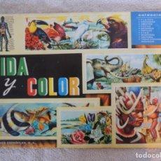 Coleccionismo Álbum: ALBUM DE CROMOS COMPLETO VIDA Y COLOR - 1965. Lote 183746265