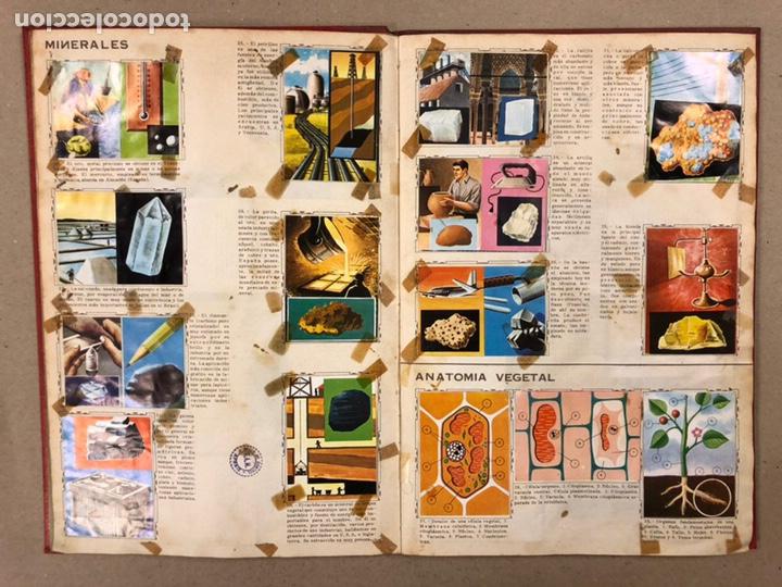 Coleccionismo Álbum: ÁLBUM ENCICLOPÉDICO DISGRA-FHER (1965). ÁLBUM DE CROMOS COMPLETO. - Foto 6 - 190481140