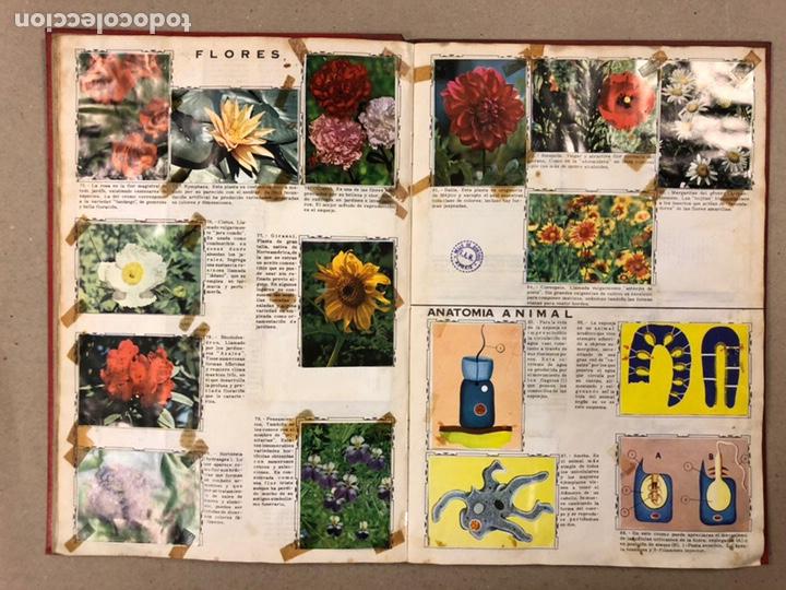 Coleccionismo Álbum: ÁLBUM ENCICLOPÉDICO DISGRA-FHER (1965). ÁLBUM DE CROMOS COMPLETO. - Foto 9 - 190481140