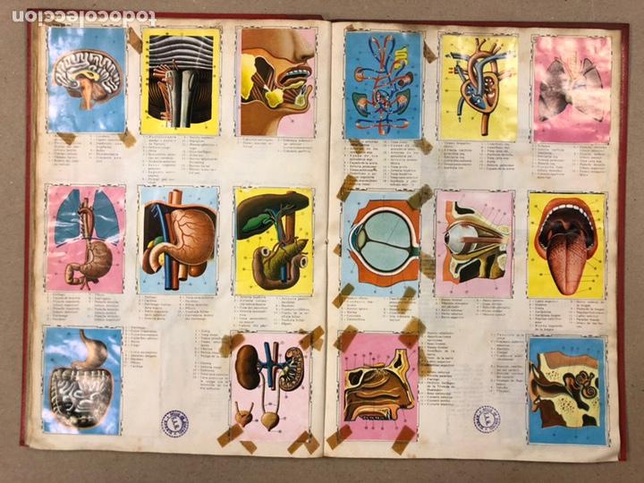 Coleccionismo Álbum: ÁLBUM ENCICLOPÉDICO DISGRA-FHER (1965). ÁLBUM DE CROMOS COMPLETO. - Foto 19 - 190481140