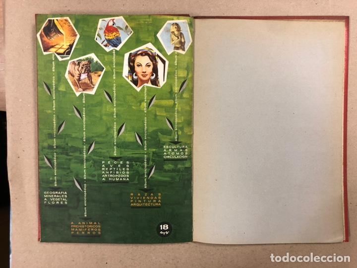 Coleccionismo Álbum: ÁLBUM ENCICLOPÉDICO DISGRA-FHER (1965). ÁLBUM DE CROMOS COMPLETO. - Foto 29 - 190481140