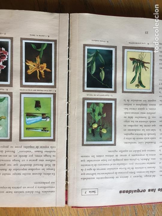 Coleccionismo Álbum: LAS MARAVILLAS DEL UNIVERSO, NESTLE Completo - Foto 5 - 194205625