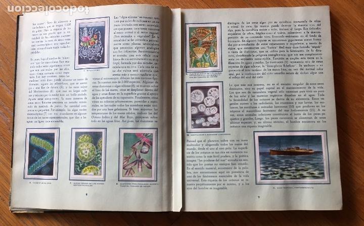 Coleccionismo Álbum: ALBUM LAS MARAVILLAS DEL UNIVERSO 2, NESTLE Completo - Foto 10 - 194206642