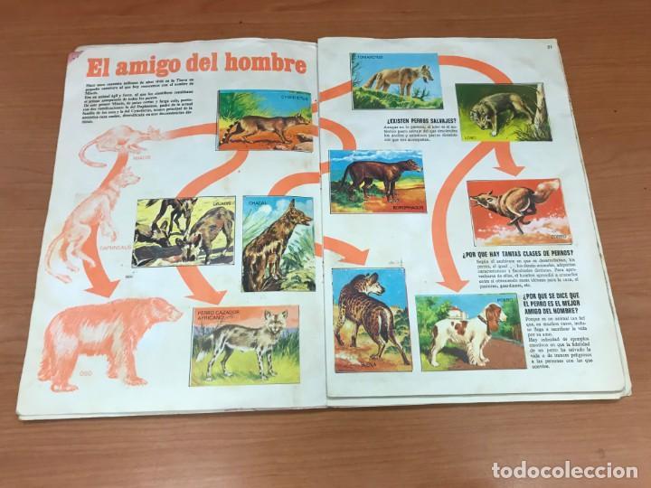Coleccionismo Álbum: EL PORQUE DE LAS COSAS N3 ALBUM BIMBO - Foto 11 - 194215596
