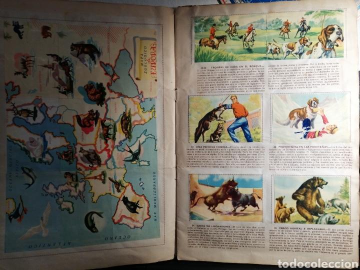 Coleccionismo Álbum: Album de cromos Completo DE LA SELVA MISTERIOSA A LOS ABISMOS DEL MAR - Foto 3 - 194887642