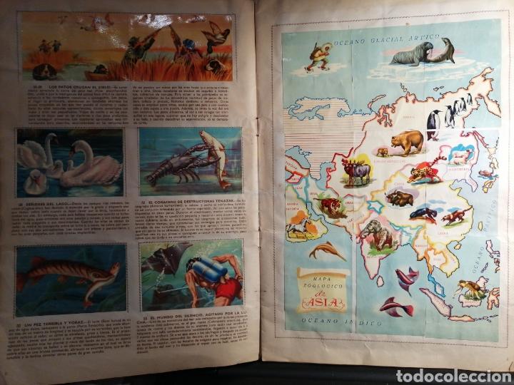 Coleccionismo Álbum: Album de cromos Completo DE LA SELVA MISTERIOSA A LOS ABISMOS DEL MAR - Foto 4 - 194887642