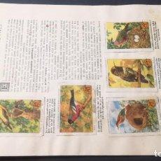 Coleccionismo Álbum: 12 EL INGENIO DE LAS AVESSELLOS AHORRO INFANTIL CAJA AHORROS ZARAGOZA COMPLETO SELLADOCP B-1. Lote 195324806
