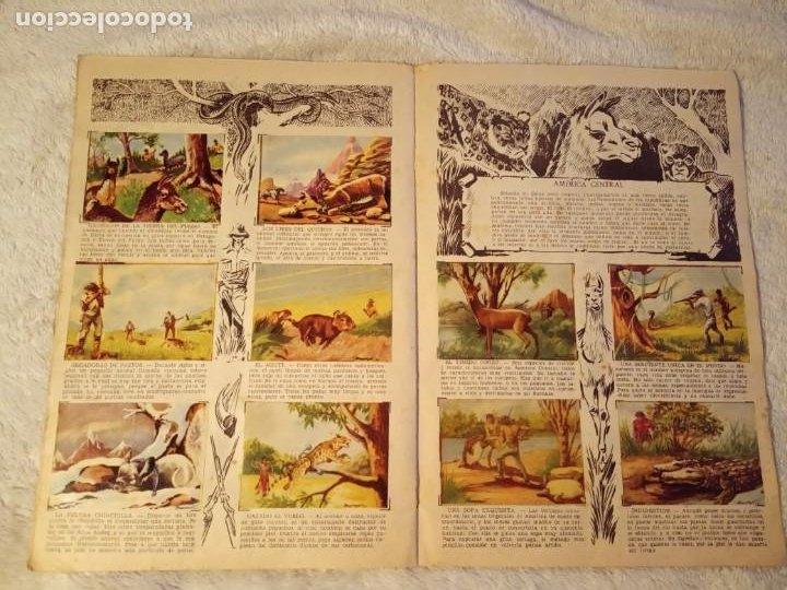 Coleccionismo Álbum: ALBUM GRANDES CACERIAS FERMA CASI COMPLETO FALTAN SOLO TRES CROMOS DIBUJOS DE BEAUMONT - Foto 5 - 195376385